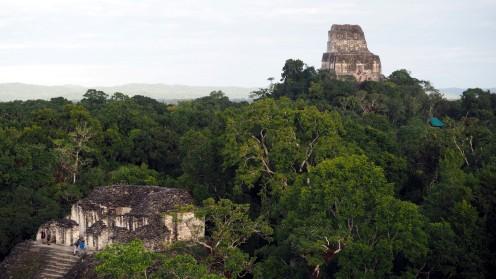 Blick auf Tempel IV