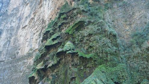 Im Canyon Sumidero