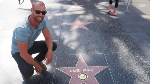 David Bowies Stern