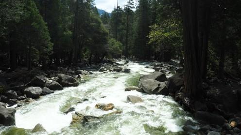 Ein Fluss im Yosemite