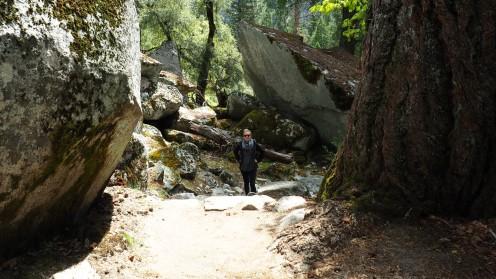 Wandern im Yosemite